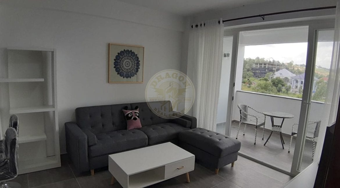 Europe Style Apartment for Rent. Dragon Real Estate
