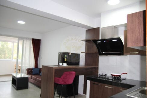 Remarkable Value. Apartment for Rent. Sihanoukville Cambodia Property Sale